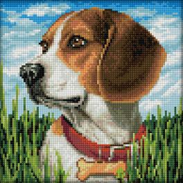 Zestaw do diamond painting - Beagle