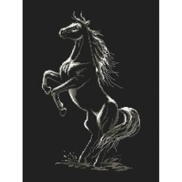 Wzór graficzny ONLINE - Zaklęty koń