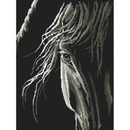 Wzór graficzny ONLINE - Spojrzenie konia