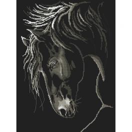 GC 10245 Wzór graficzny - Dostojny koń