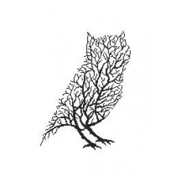 Wzór graficzny - Czarna sowa