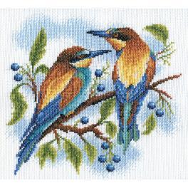 PAPS 0429 Zestaw do haftu - Kolorowe ptaki