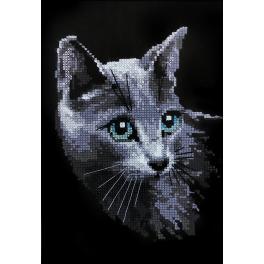 Zestaw z włóczką - Rosyjski kot