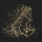 Wzór graficzny ONLINE - Gwiezdny koń