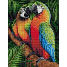M AZ-1791 Zestaw do diamond painting - Papugi w dżungli