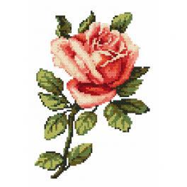 Wzór graficzny online - Róża - B. Sikora-Małyjurek