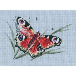 Zestaw z muliną - Letnia motyla piękność