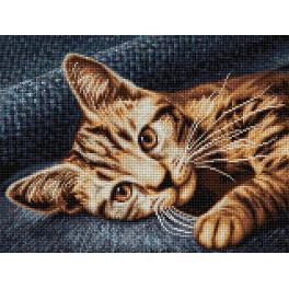 M AZ-1700 Zestaw do diamond painting - Brązowy kot