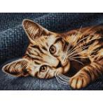 Zestaw do diamond painting - Brązowy kot