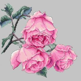 ZN 10270 Zestaw z nadrukiem i muliną - Gałązka róży