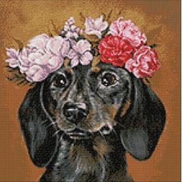 Zestaw do diamond painting - Jamnik w kwiatach