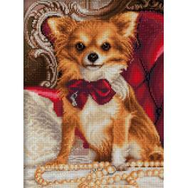 Zestaw do diamond painting - Chihuahua w muszce