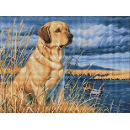 Zestaw do diamond painting - Labrador na łowach