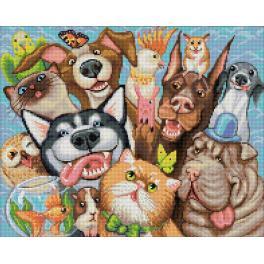 Zestaw do diamond painting - Zwierzęce selfie