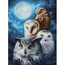 Zestaw do diamond painting - Nocne sowy