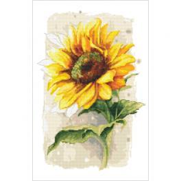 ZN 10436 Zestaw z nadrukiem i muliną - Dumny słonecznik