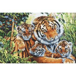 Zestaw z muliną - Duma tygrysicy