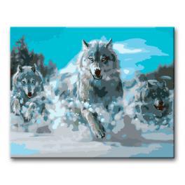 Zestaw do malowania po numerach - Wilki w biegu na śniegu