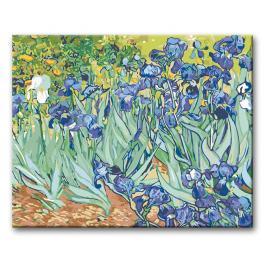 Zestaw do malowania po numerach - Irysy - Van Gogh