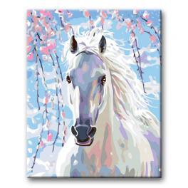 Zestaw do malowania po numerach - Biały koń