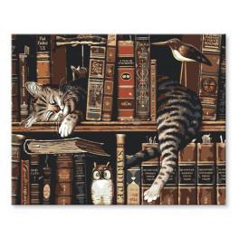 Zestaw do malowania po numerach - Kot w bibliotece