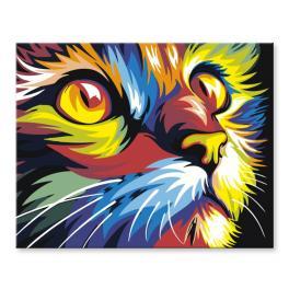 Zestaw do malowania po numerach - Kolorowy kot