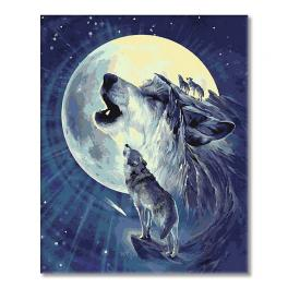 WD T127 Zestaw do malowania po numerach - Wilk w świetle księżyca