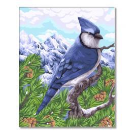 WD H106 Zestaw do malowania po numerach - Sójka modra