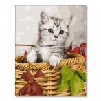 GX26366 Malowanie po numerach - Kotek w koszyku
