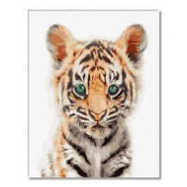 GX32146 Malowanie po numerach - Tygrysek