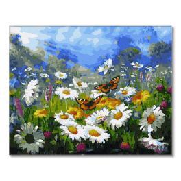 GX34089 Malowanie po numerach - Letnie motyle