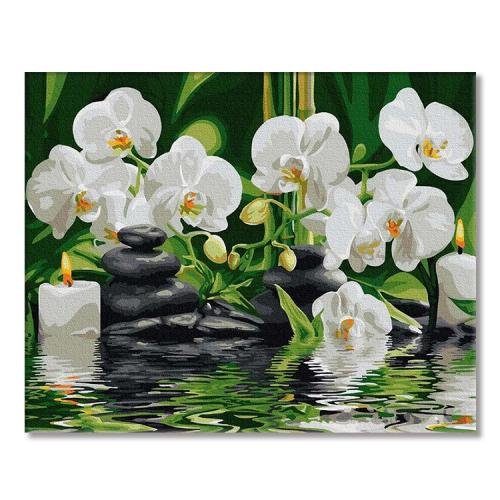 PC4050567 Malowanie po numerach - Storczyki w cichej wodzie