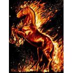 M AZ-1850 Zestaw do diamond painting - Płonący koń