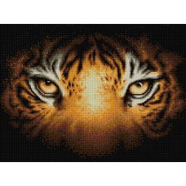 M AZ-1827 Zestaw do diamond painting - Spojrzenie tygrysa