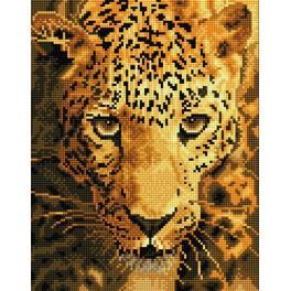 DD6.005 Zestaw do diamond painting - Grasujący jaguar