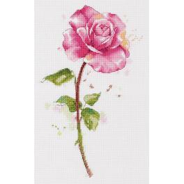 PAC 7190 Zestaw do haftu - Akwarelowa róża