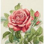 PAPD 7116 Zestaw do haftu - Poduszka - Róża vintage