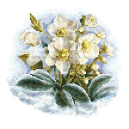 AN 10306 Aida z nadrukiem - Zimowy kwiat