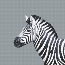 Z 10656 Zestaw do haftu z muliną - Czarno-biała zebra