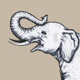 Z 10655 Zestaw do haftu z muliną - Czarno-biały słoń