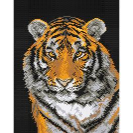 K 444 Kanwa z nadrukiem - Tygrys