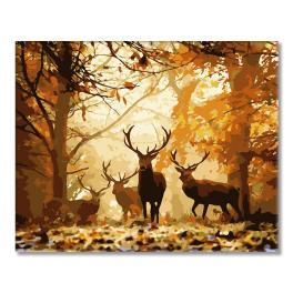WD H001 Malowanie po numerach - Leśny jeleń