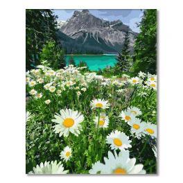 PC4050657 Malowanie po numerach - Górski rumiankowy krajobraz