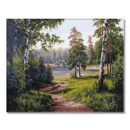 PC4050658 Malowanie po numerach - Leśna droga