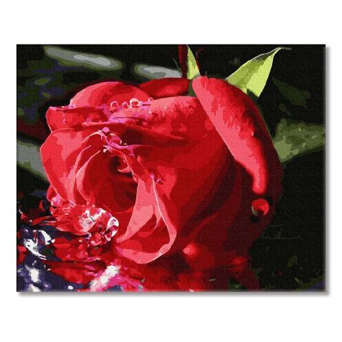 PC4050612 Malowanie po numerach - Delikatny pąk róży