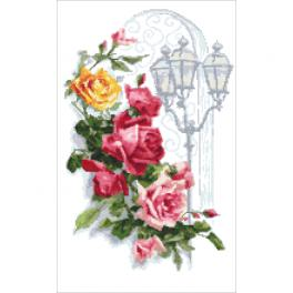K 10446 Kanwa z nadrukiem - Kolorowe róże z latanią
