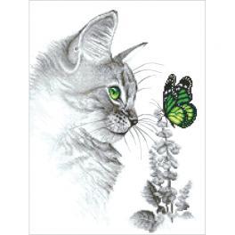 AN 10300 Aida z nadrukiem - Kotek z motylkiem