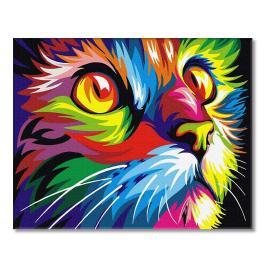 PC4050344 Malowanie po numerach - Tęczowy kot