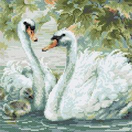 RIO AM0036 Zestaw do diamond painting - Białe łabędzie