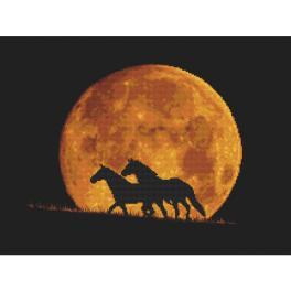 GC 10323 Wzór graficzny - Konie w blasku księżyca